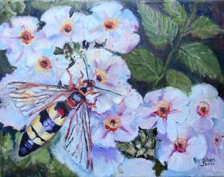 Pollen Seeker-Bee, New Contemporary Painting by Sheri Jones