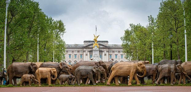 Herds of Life-Sized Elephants Roam Through London's Parks for a Global Conservation Project