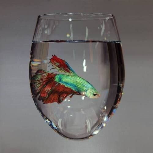 Hyper-Realistic Animal Paintings by Young-Sung KimBorn in Seoul
