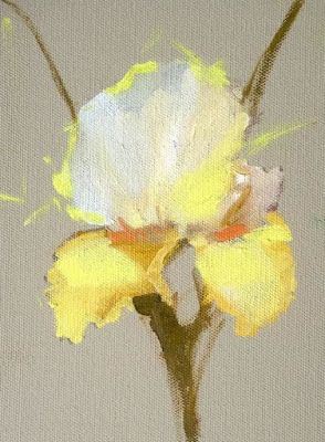 "Still Life Floral Painting, Flower Art ""Yellow Iris"" by Colorado Artist Susan Fowler"