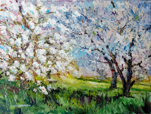 """Orchard In Spring 18"""" x 24"""" Oil / Canvas"""