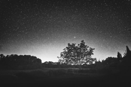 Night Sky Photos in the Style of 19th-Century Pictorialism