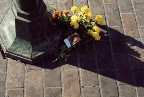 The Color Photography of Vivian Maier