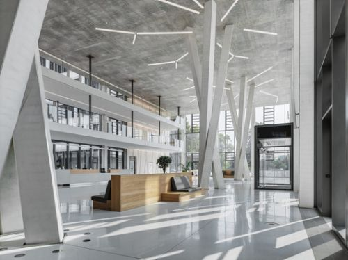The Power of Concrete: Twisted Tree-Shaped Supports and Beams