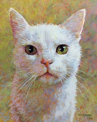 Nabi - a commissioned cat portrait