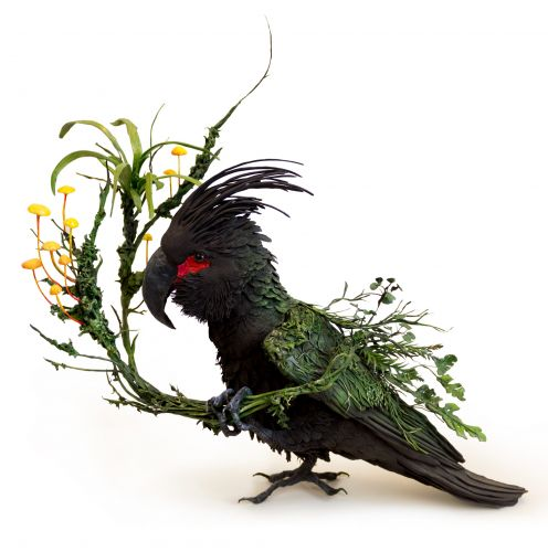 Ornate Birds and Sea Creatures Spring to Life With Environmental Embellishments of Flowers and Foliage