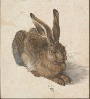 Hare by Durer; not your typical Easter Bunny
